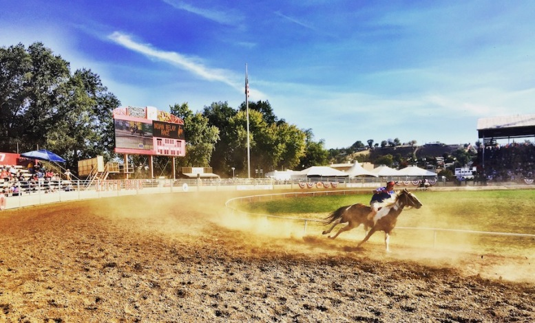 Indian Relay Race at the Pendleton Round-up